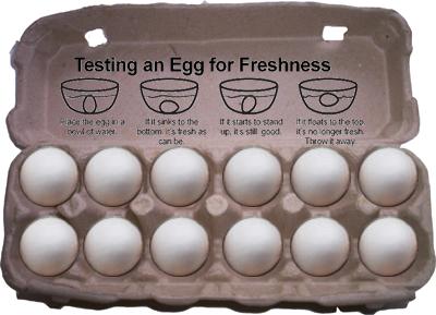 Fresh-egg-carton